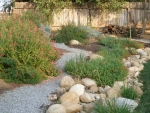 A small gravel walkway meanders through the slope above the French drain